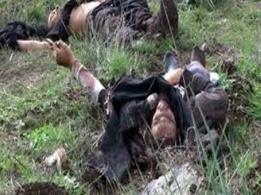 مقتل متزعمين لإرهابيي النصرة في هجوم على الحدود السورية اللبنانية