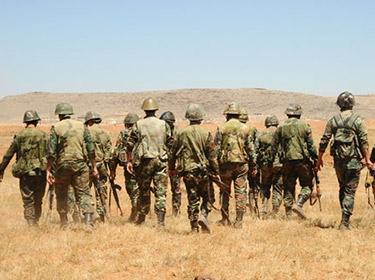الجيش يستهدف بالقصف الصاروخي مواقع لإرهابيي داعش في ريف الحسكة